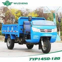 Dump Waw Chinese Diesel Three Wheel Truck for Sale (WD3B3525103)