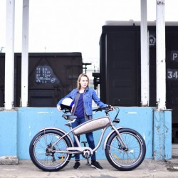 2017 Newest Ce/TUV Standard Fat Tire Electric Bicycle