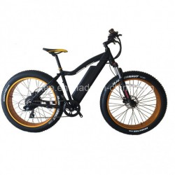 New Model 26*4.0 Fat Tire 500W Electric Mountain Bike