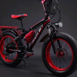 High Quality Fat Tire Electric Bike Electric Bicycle