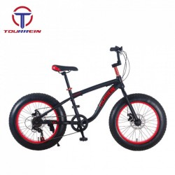 Fashion Full Suspension MTB Steel Fat Tire Snow Bicycle