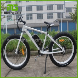 Fat Tyre Mountain Electric E-Bicycle/Ebike for Sale