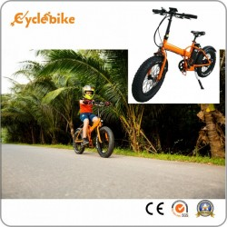 36V 250W 20inch X 4.0 Mini Folding Fat Tire Electric Bicycle