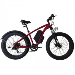 36V 350W Lithium Battery Fat Tire Electric Bike