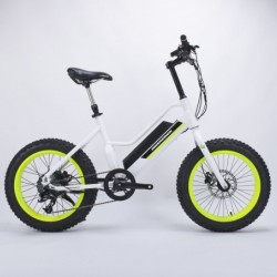 Beach Fat Tire Electric Bike for Men Use Lithium Power