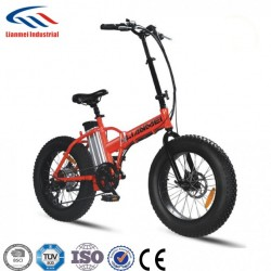 Lianmei Folding Electric Bike with 20 Inch Fat Tire