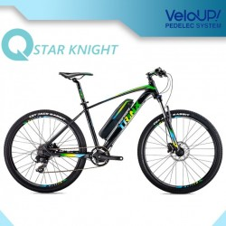Green Power 36V 250W Fat Tire for Electric Bike