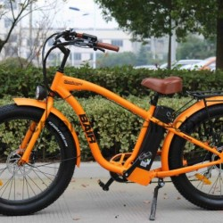 Ce Mountain Electric Bicycle with Fat Tire