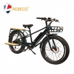 2018 High Power New Design Fat Tire Lithium E-Bike