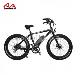 Fat Tyre Electric Bike 500W 750W Motor High Power Fashion Model