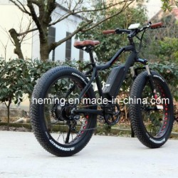 250W Powerful Brushless Motor Fat Tire Ebike