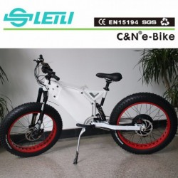 Electric Bike Fat Tire TFT Colorful Display 1500W Fat Bicycle