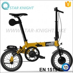14 Inch 36V 250W Folding Electric Bike with Lithium Battery