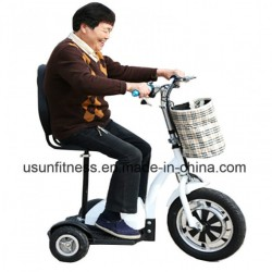 48V 500W Folding Electric Scooter, Motorcycle, E Bicycle for Elderly