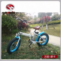 2017 Deign Folding Fat Tyre Electric Bike Mountain for Adult