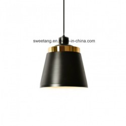 Home Interior Lamp for Pendant Lighting Decoration