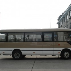 20 Seats Good Performance Mini Bus with Practical Feature