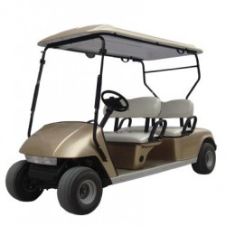 2018 Most Fashionable 4-Seat Golf Cart