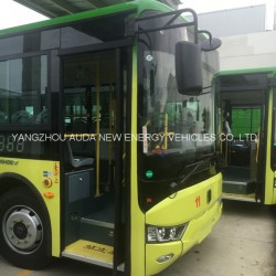Good Condition Brand New Electric Bus for Public