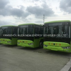 2017 Hot Sale Model 10m Electric Bus Coach