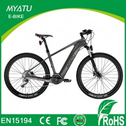 Electric Bicycle Europe for Carbon Fiber E Bicycle