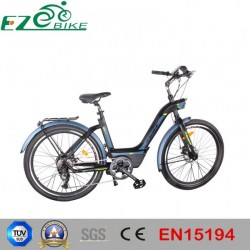 Ce Approved Electric Bike Made in China