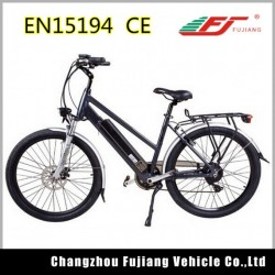 Beautifully Designed E Bike with Rear Rack and Basket