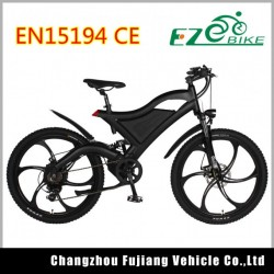 Electric Bike with Ce SGS En15194