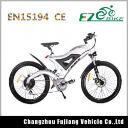 Popular Samsung Cell E-Bike Battery 48V
