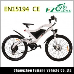 Easy-Controlled Electric Bike with Lithium Battery