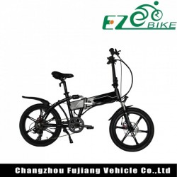 Lingt Weight Aluminum Folding E Bike