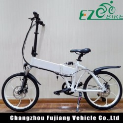 Folding Electric Bike 20 with Integrated Wheel