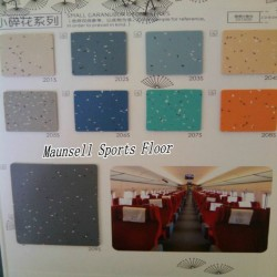 China Factory Top Quality PVC/Homogeneous Flooring for Transport Are