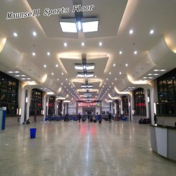 Professional PVC/Homogeneous Flooring for Airport/Subway/Office