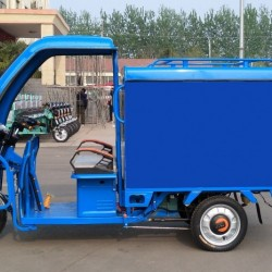 Environment Bicyale 800W Three Wheel Electro Tricycle for Sale