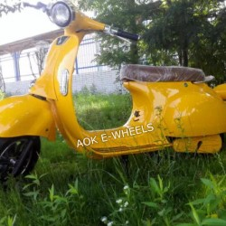 1000W60V New Design Electric Motorcycle Electric Scooter (EM-006)