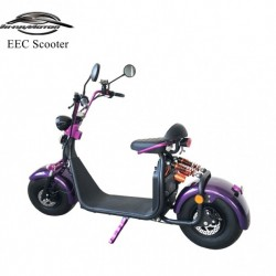 Factory Cheaper 1500W 20ah Lithium Electric Scooter with EEC