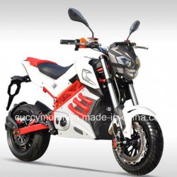 Chinese 2000W 1500W Indonisia Brazil Philippines Malaysia Cuba Racing Electric Bike (New Panther)