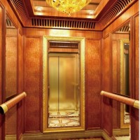 800kg Mirror Finish Passenger Elevator with Stainless Steel Door (XNK-003)